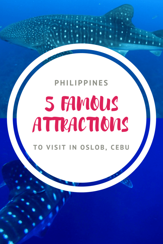 Visiting the Philippines? Here are 5 famous attractions to visit in Oslob (Cebu)