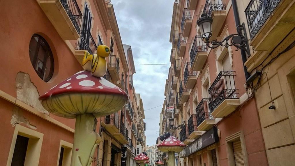 Alicante mushroom street
