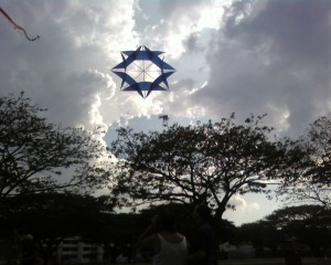 Kite-Flying at Pasir Ris Park