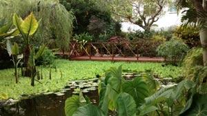 Barbados tourist attractions