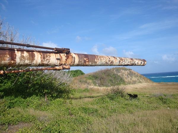 Barbados super gun