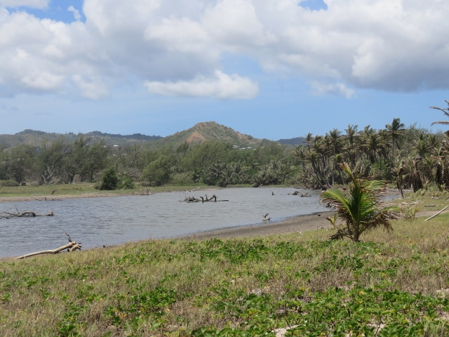 walk a windswept Barbados beach, Long Pond