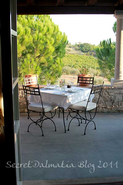 The terrace overlooking the vineyards