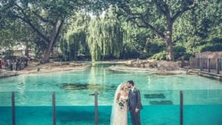 married-in-london