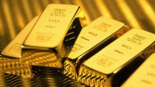gold-bar-hunt