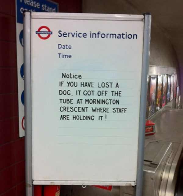 tfl-sign-lost-dog
