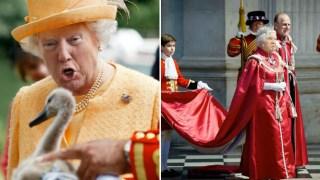 trump-queen