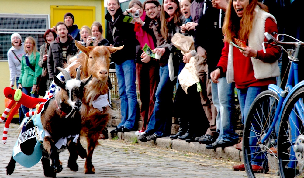 Oxford Cambridge Goat Race