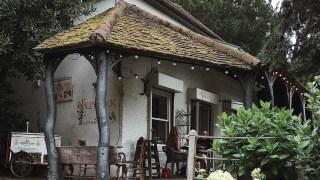 Hollyhock Cafe