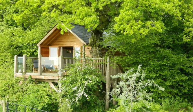 treehouse-feature