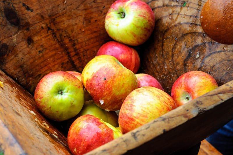cider-apple-festival-london