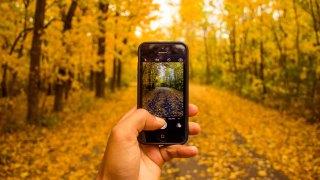 Autumn day trips