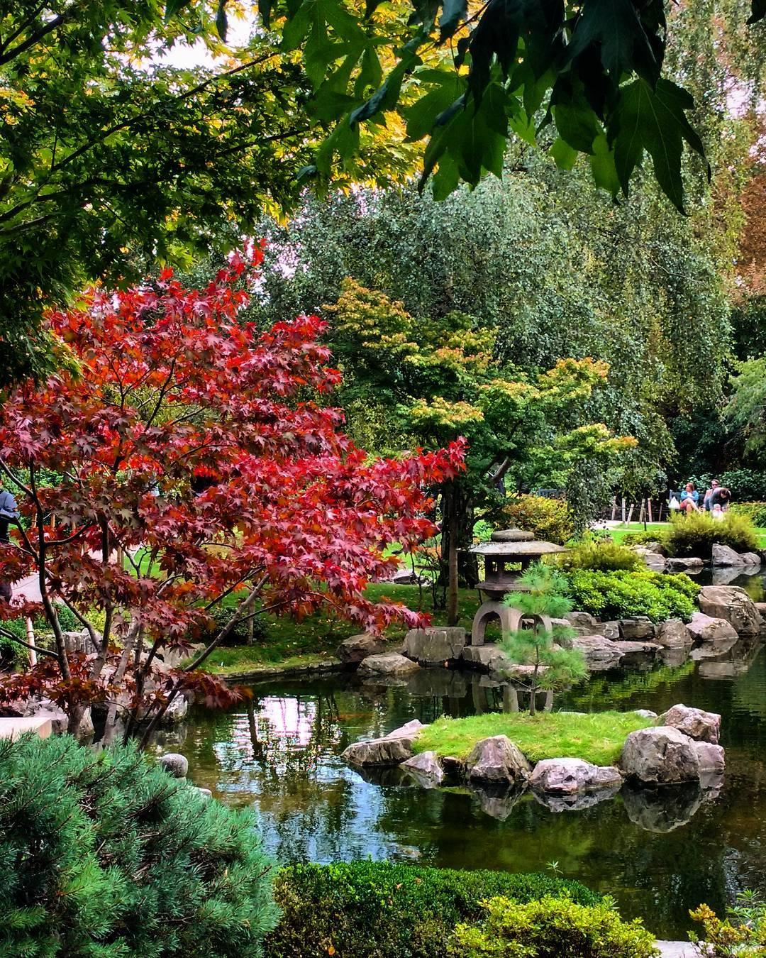 kyoto-garden-lush
