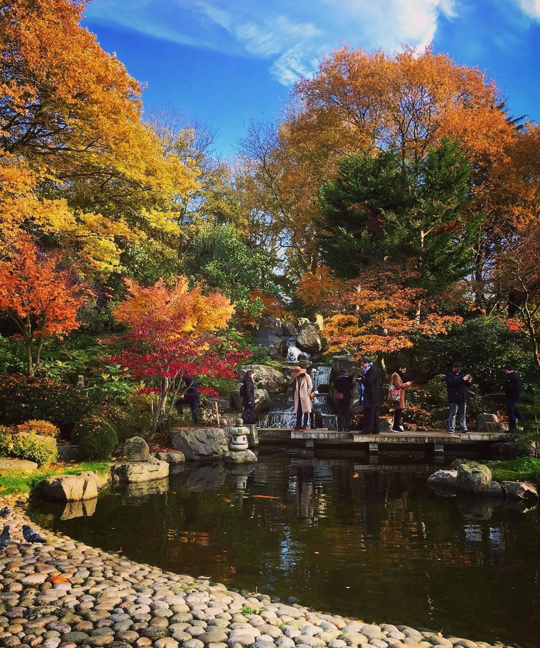 kyoto-garden-autumn