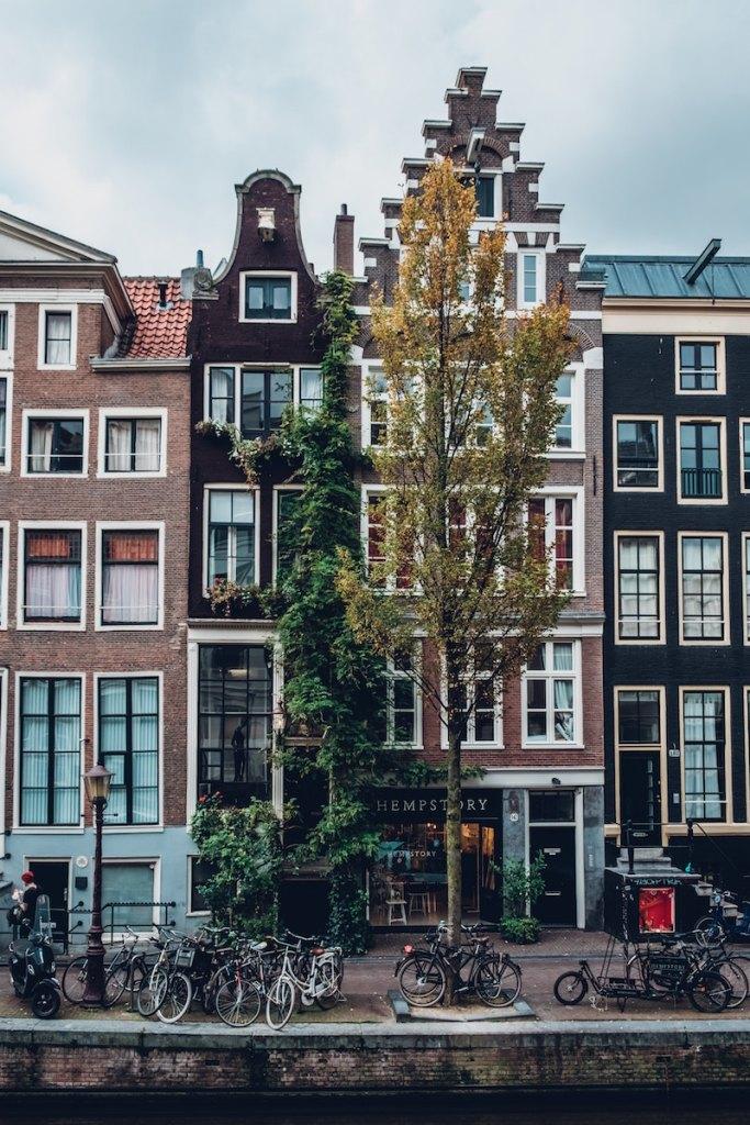 Amsterdam portrait