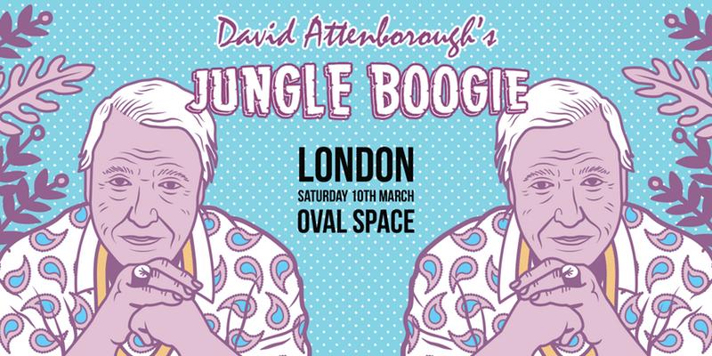 david-attenborough-jungle-boogie
