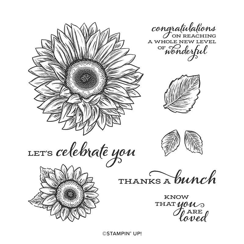 Stampin Up Celebrate Sunflowers Stamp Set