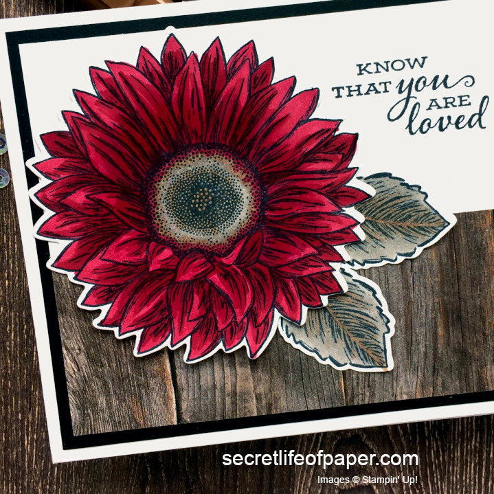 Stampin Up Celebrate Sunflowers 1:1 Cherry Cobbler