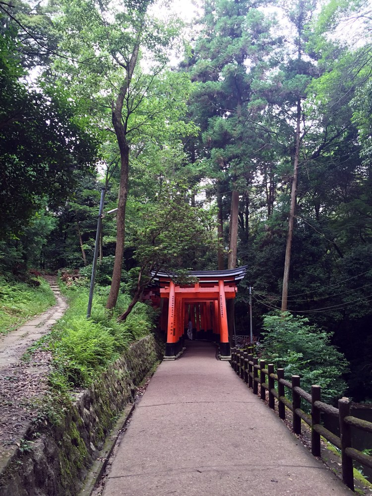Torii gate within forest