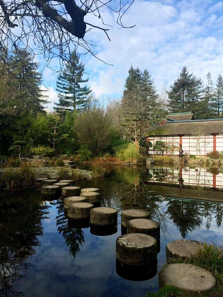 Rock pond at Ile de Versailles - photo diary