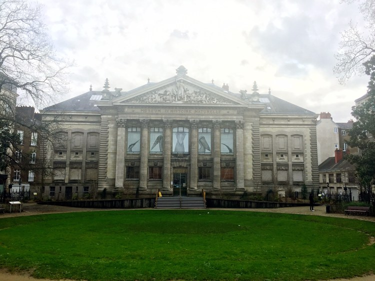 Museum of Natural History, Nantes