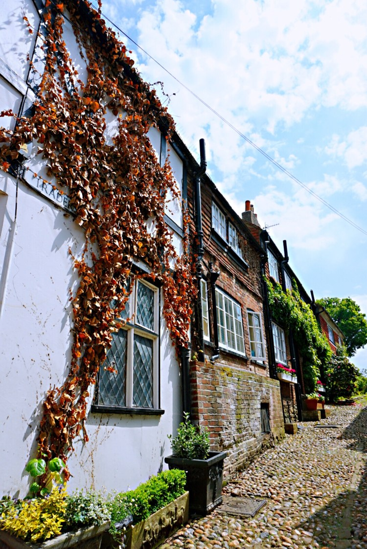 Charming houses - Rye East Sussex