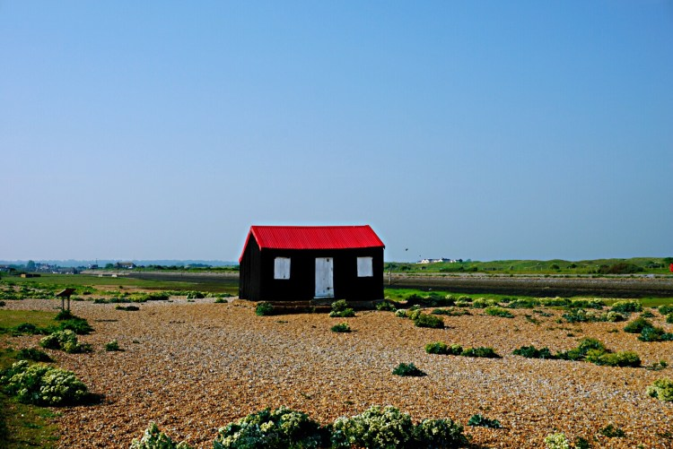 Beach hut with red roof, Rye Harbour - Rye East Sussex
