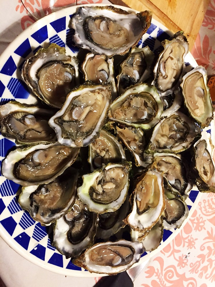 Oysters - Guide to the best tourist attractions, places in Brittany