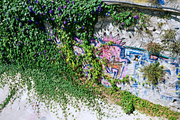 Green Graffiti - Things to do in Montpellier