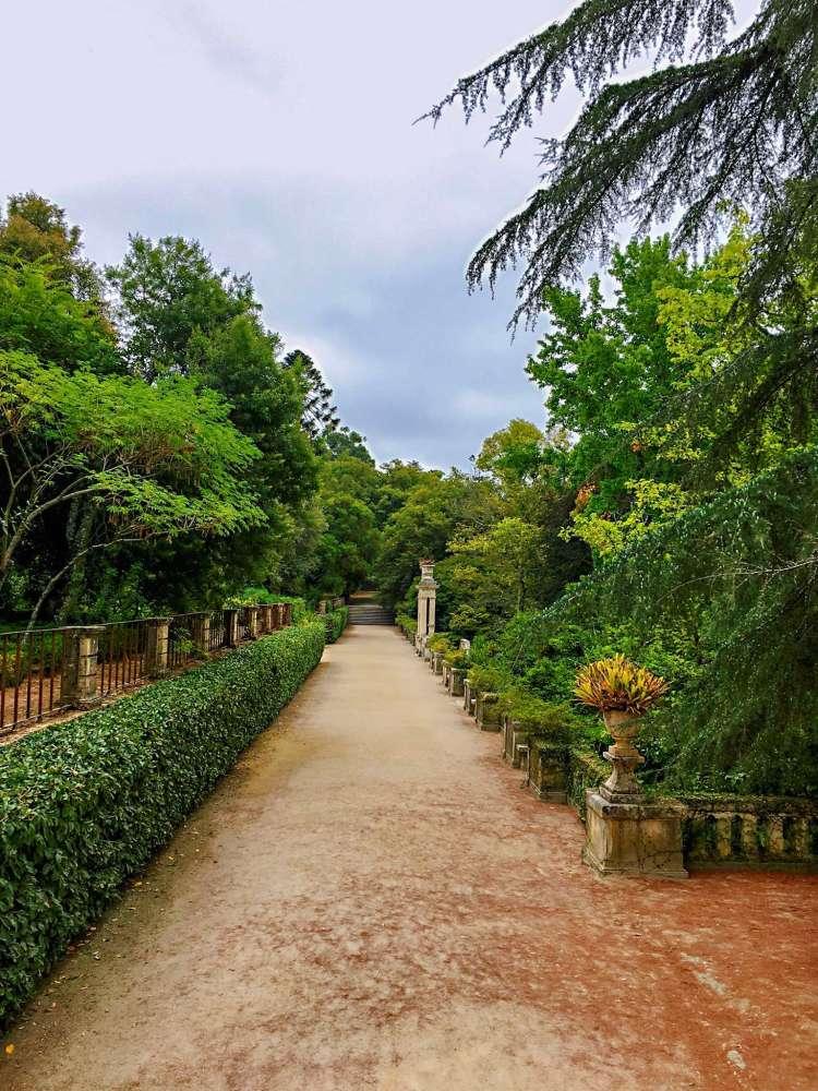 Jardim Botânico de Coimbra - one day in Coimbra