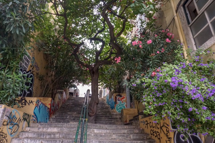 Green space in Alfama - 3 day in Lisbon