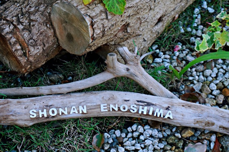 Day trip to Enoshima: Exploring a quaint coastal town