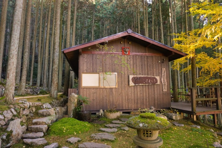 Looking for secret treasures? Kokemushiro Moss Garden Cafe, a hidden gem in the heart of Ehime Prefecture.