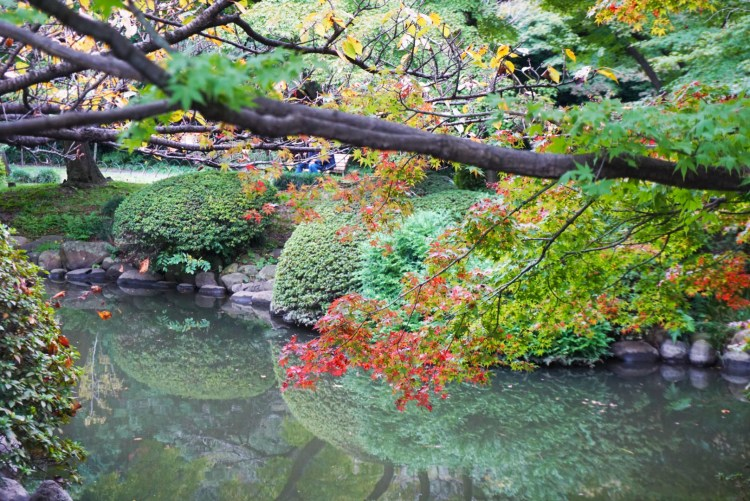 13 reasons to visit Japan in autumn - beautiful autumn colours