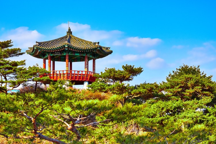 Facts to know before travelling to South Korea