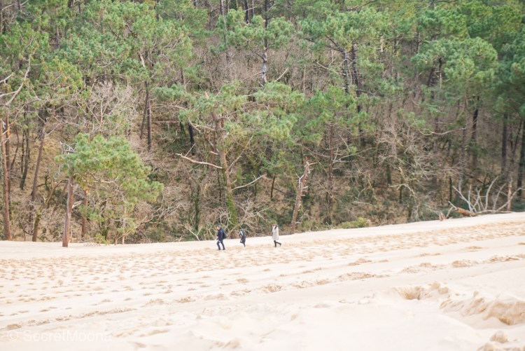 Three people walking on sand with the forest as a backdrop
