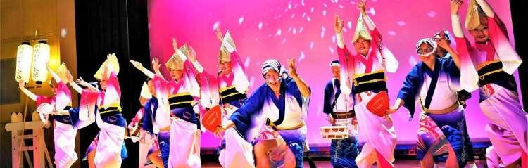 Awa Odori dance performance, Shikoku