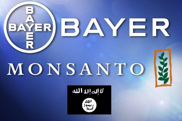Bayer-Monsanto racheté par l'Etat Islamique : Un vent de panique écologique