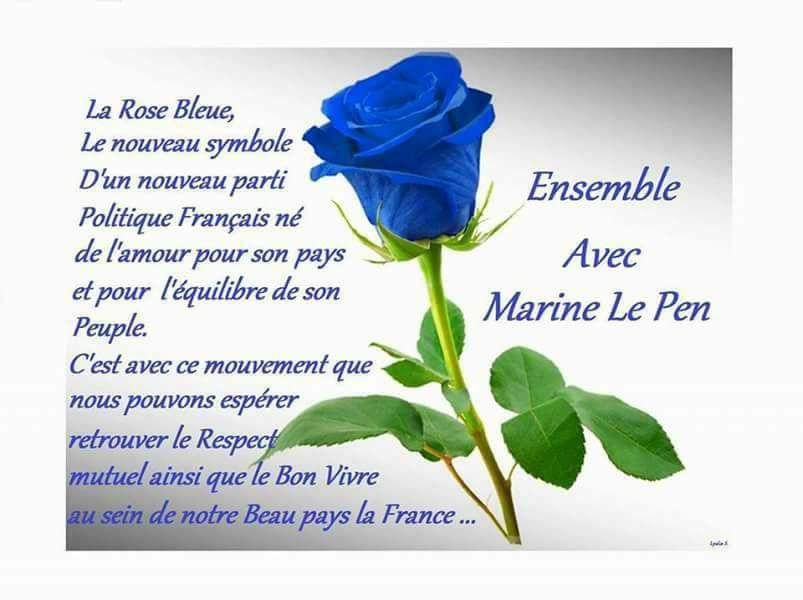 montage-Marine-Le-Pen-18 TOP 50 des plus beaux montages photos de Marine Le Pen : Il y a du talent au FN !