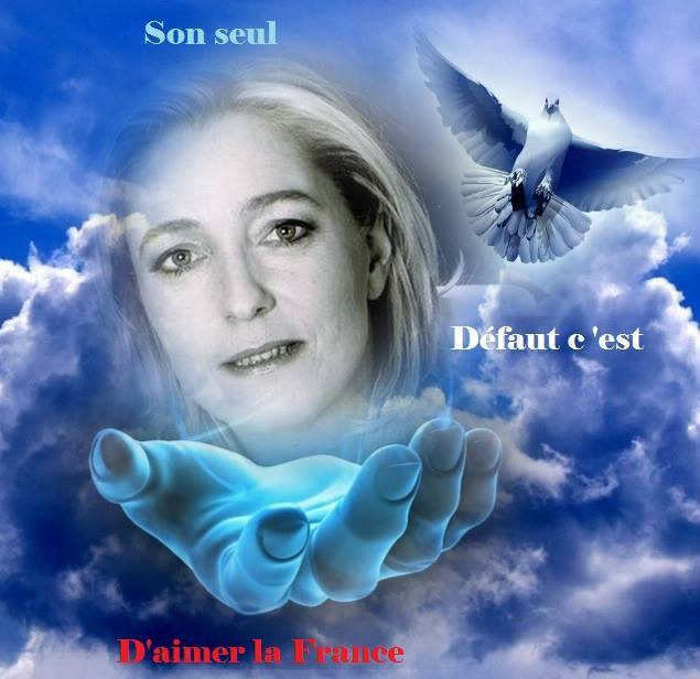 montage-Marine-Le-Pen-23 TOP 50 des plus beaux montages photos de Marine Le Pen : Il y a du talent au FN !