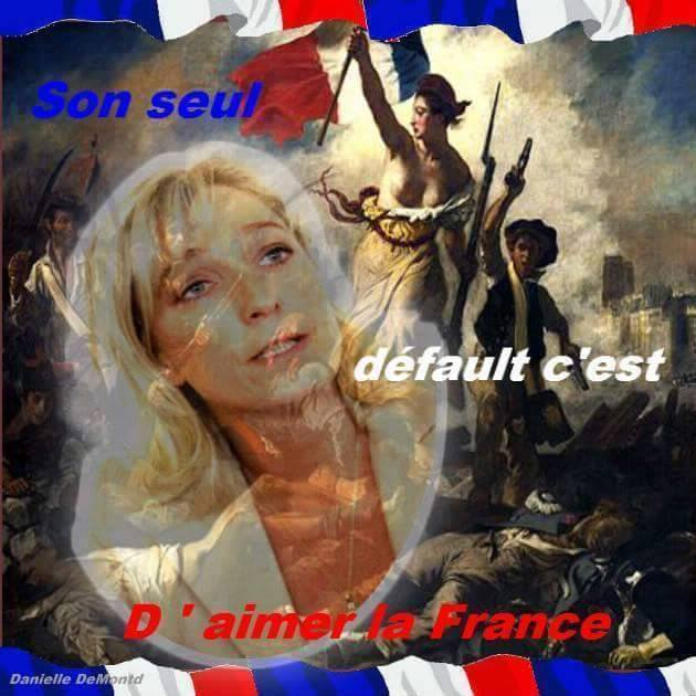 montage-Marine-Le-Pen-44 TOP 50 des plus beaux montages photos de Marine Le Pen : Il y a du talent au FN !