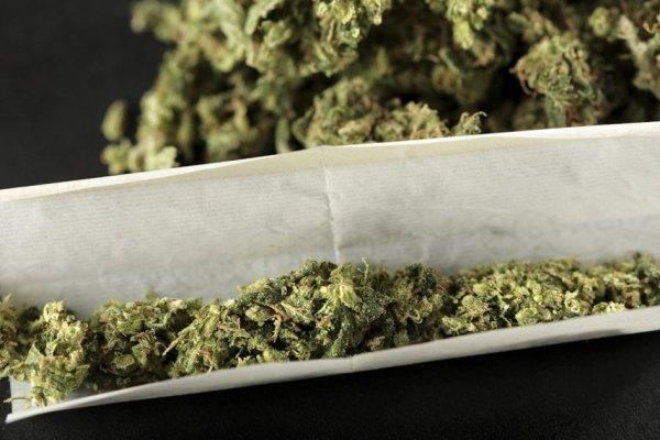 Pour économiser, les jeunes mettent plus d'herbe et moins de tabac dans leurs joints