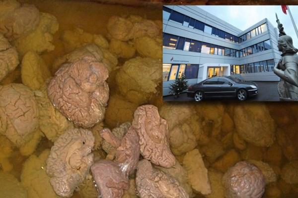 On a retrouvé les cerveaux de la fachosphère dans la cave du Front National