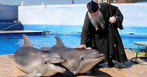 Russie : deux dauphins homosexuels mariés par un prêtre orthodoxe