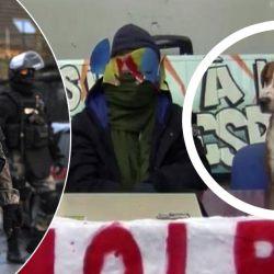Universités - La BRI, le Raid et le GIGN vont lancer l'assaut pour libérer le chien pris en otage à Tolbiac