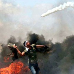 Tennis : La Palestine fait un joli bond au classement mondial