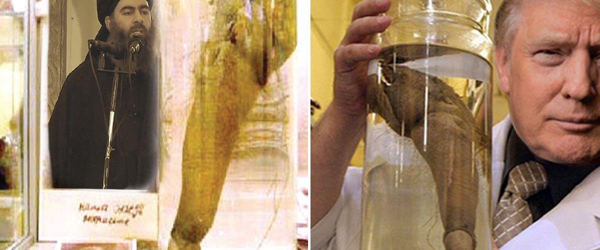 Le pénis d'Al-Baghdadi conservé par les Américains pour le priver des 72 vierges