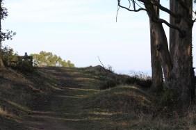 SCA Trail 11-20-15 0480
