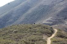 SCA Trail 11-20-15 0544