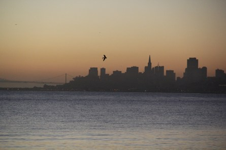 Sunrise on Bridgeway 10-29-15 9798